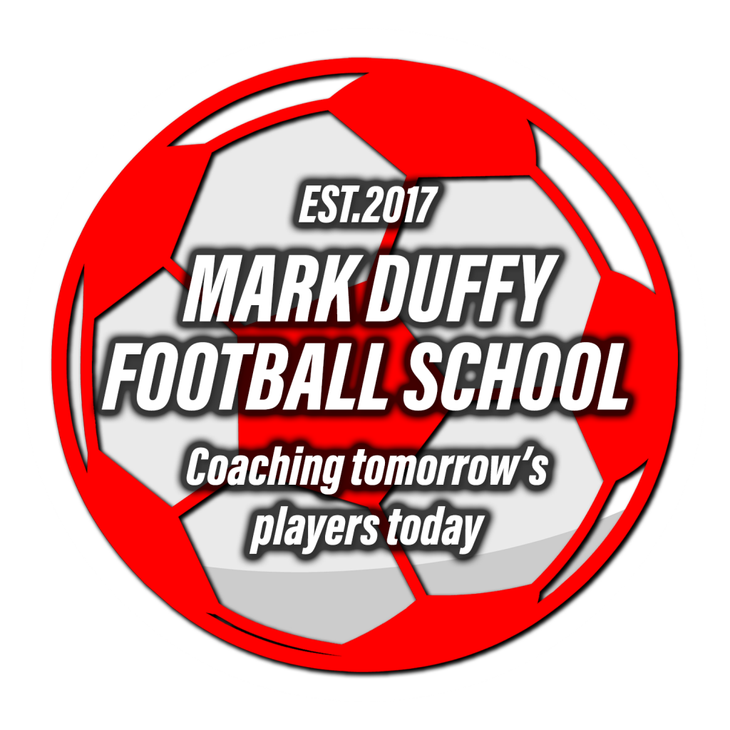 MDFS logo